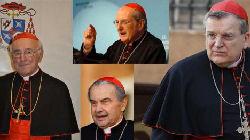 4 Cardinali Dubia
